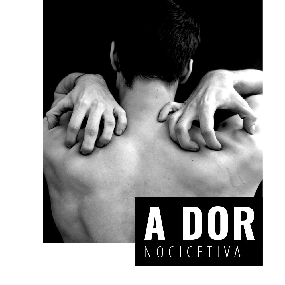 A Dor Nociceptiva